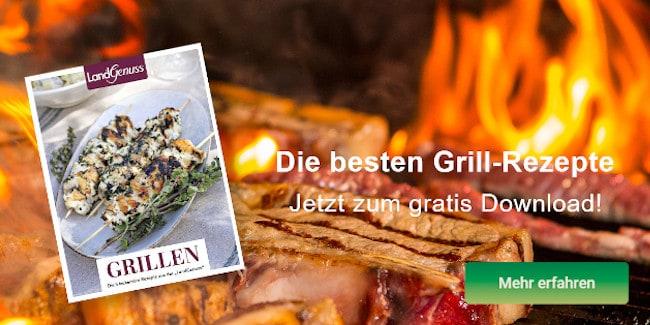 Die besten Grill-Rezepte 👉 Jetzt Gratis E-Book sichern